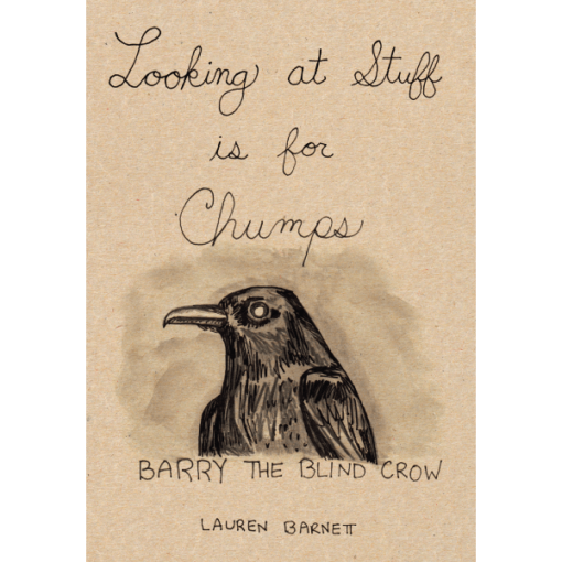 Looking at Stuff is for Chumps - Lauren Barnett
